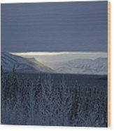 Winter Sun Alaska Wood Print by John Wolf