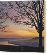 Winter Sunrise In Eden Park Wood Print