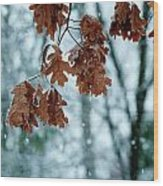 Winter Takes Hold Wood Print