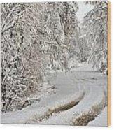 Winter Tracks Wood Print