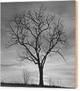 Winter Tree Silhouette Wood Print