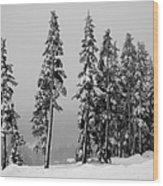 Winter Trees On Mount Washington - Bw Wood Print