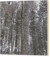 Winter Tress Wood Print