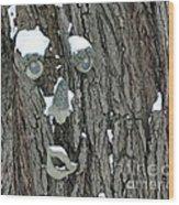 Winter Weary Wood Print