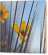 Winter Wildflowers Wood Print