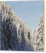 Winter Wonderland Austria Europe Wood Print by Sabine Jacobs