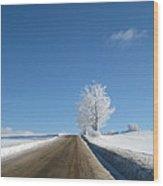 Winter Wonderland Series 5 Wood Print