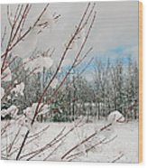 Winter Woods Wood Print by Joann Vitali