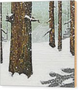 Wintering Pines Wood Print