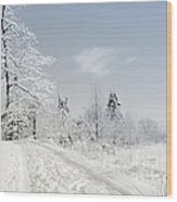 Winters Beauty Wood Print