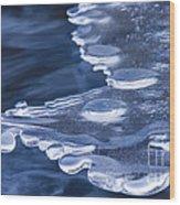 Winters Grip Wood Print