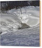 Winter's Satin Blanket Wood Print