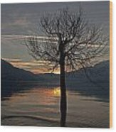 Wintertree In The Evening Wood Print