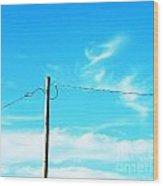 Wire Wrangler Wood Print