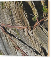 Wired Fence Post Wood Print