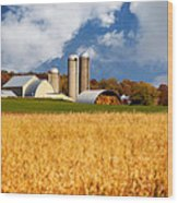 Wisconsin Farm In Fall Wood Print