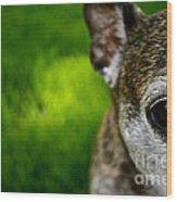 Wise Eye Wood Print