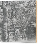 Wise Old Tree Wood Print
