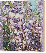Wispy Wisteria Wood Print