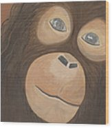 Wistful Chimpanzee Wood Print