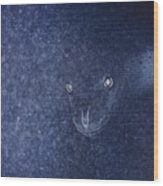 With Glowing Eyes, A Leopard Seal Peers Wood Print