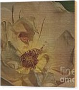 Withering Rose Wood Print