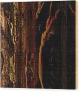 Wizened Wood Print