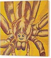 Wolf Spider Wood Print by Thomas Maynard