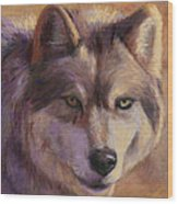 Wolf Study Wood Print
