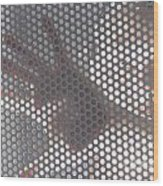 Woman Behind A Metal Mesh Wood Print