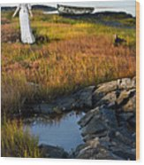 Woman By Boat On Grassy Shore Wood Print