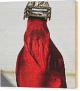 Woman Draped In Red Chadri Carries Wood Print by Thomas J Abercrombie