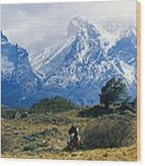 Woman Riding Horseback, Torres Del Wood Print