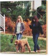 Women Walking A Dog Wood Print
