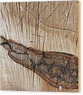 Wood Design Wood Print