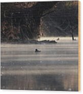 Wood Duck - On The Scenic Sucarnoochee River Wood Print