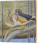 Wood Duck Pair At The Lake Wood Print
