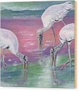 Wood Stork Family At Sunset Wood Print