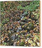 Wooded Creek Wood Print