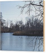 Wooded Island Exposition Wood Print