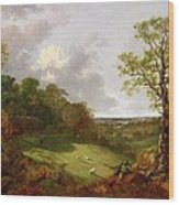 Wooded Landscape With A Cottage - Sheep And A Reclining Shepherd Wood Print