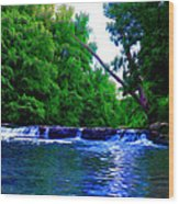 Wooded Waterfall Wood Print by Bill Cannon