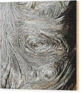 Wooden Fingerprint Eddies In The Grain Of An Old Log Like Whorls On A Finger Wood Print