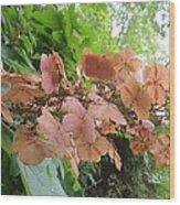 Wooden Hydrangea Wood Print