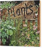 Wooden Plant Sign In Flowers Wood Print