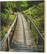 Wooden Walkway Through Forest Wood Print
