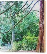 Woodland And Huge Tree Illustration Wood Print