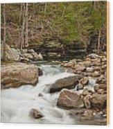 Woodland Creek Wood Print