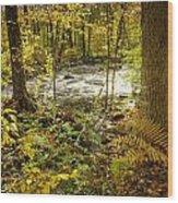 Woodland Scene Wood Print