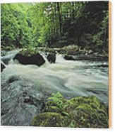 Woodland Stream And Rapids, Time Wood Print